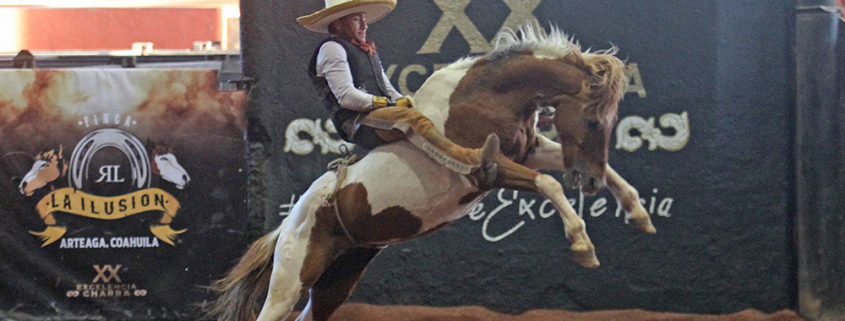Alejandro Estrada aguantó los reparos de este ejemplar, cosechando 20 puntos para Montaña Negra