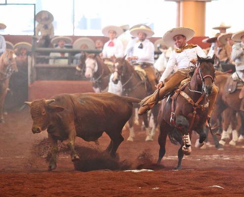 Rancho El Gallito-Xico se llevó el compromiso debajo de excelencia (1)