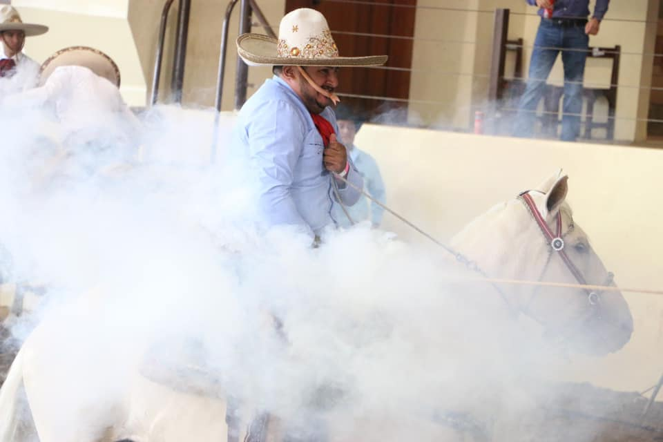 12 pial mucho humo