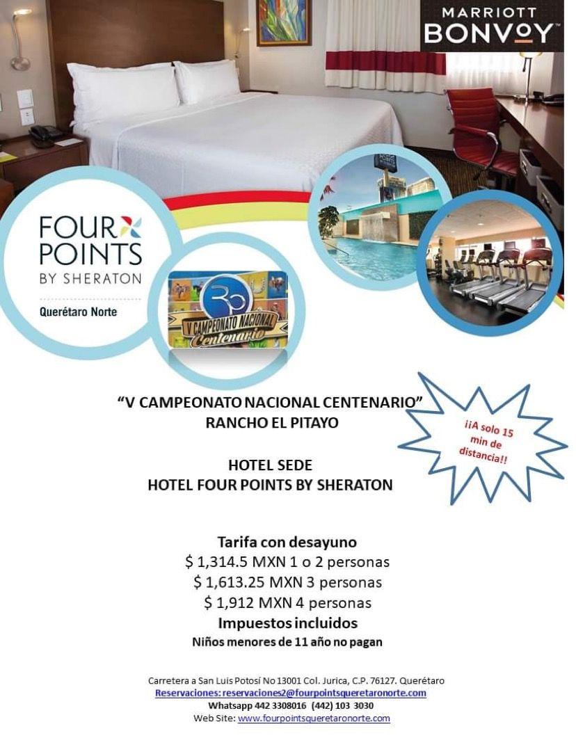 Pitayo Hoteles 4 Points