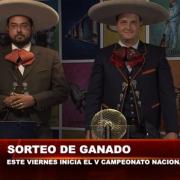 Sorteo de ganado Centenario